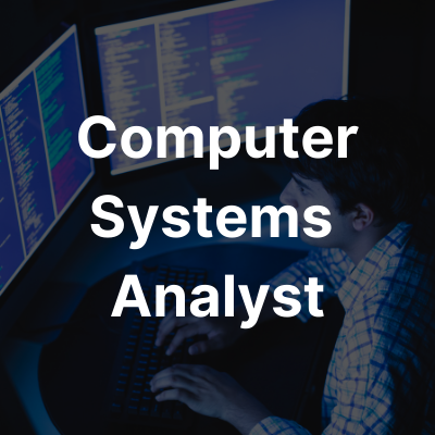 Computer System Analyst